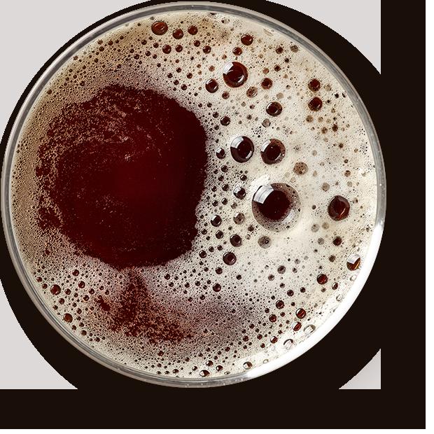 Bier Brauwerk Allgäu